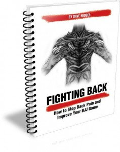 Fighting Back - How to Stop Back Pain & Improve your BJJ game