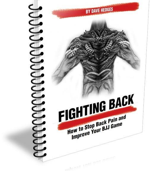 Fighting Back eBook